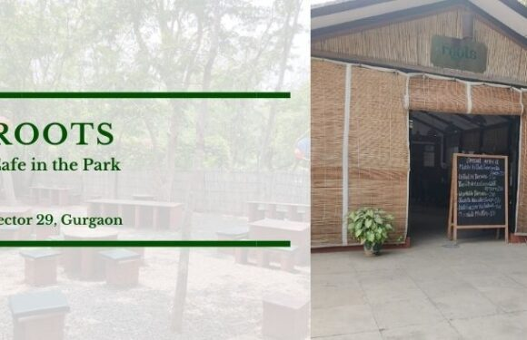 Roots – Cafe in the Park – Sector 29, Gurgaon/Gurugram